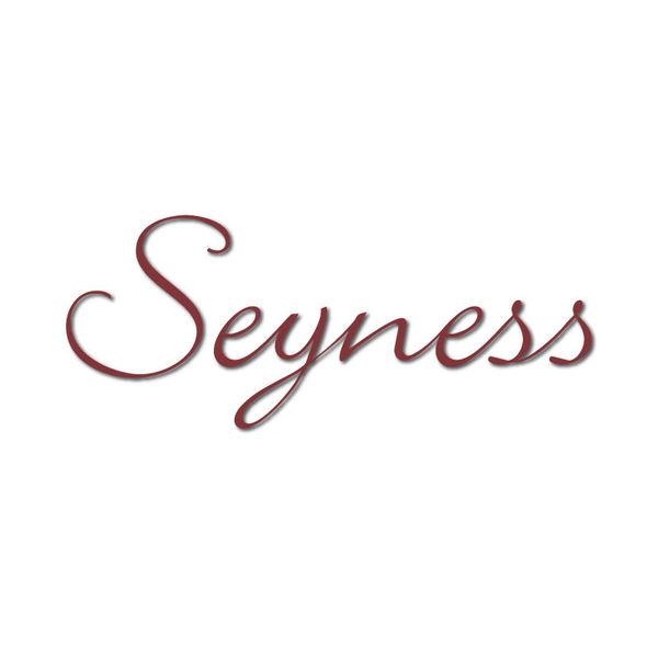 Seyness Logo