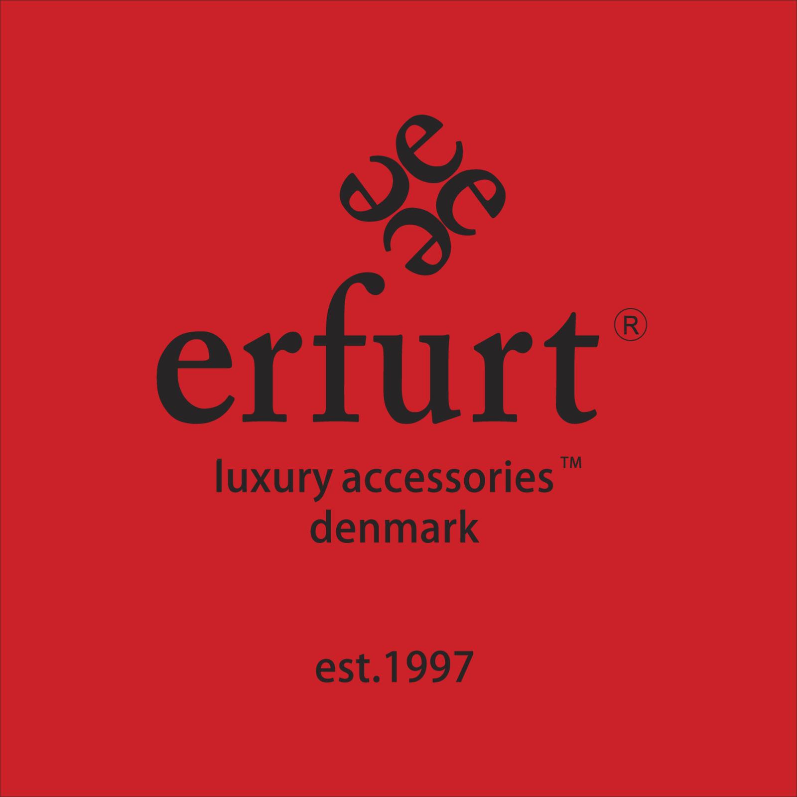 erfurt (Bild 1)