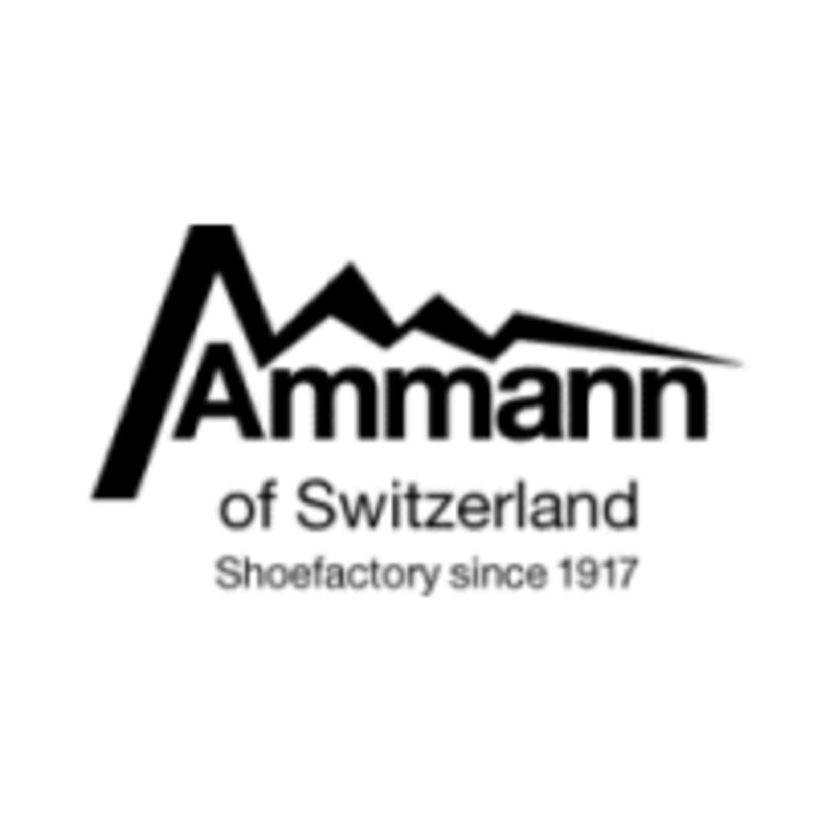 Ammann of Switzerland