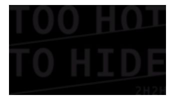 TOO HOT TO HIDE Logo