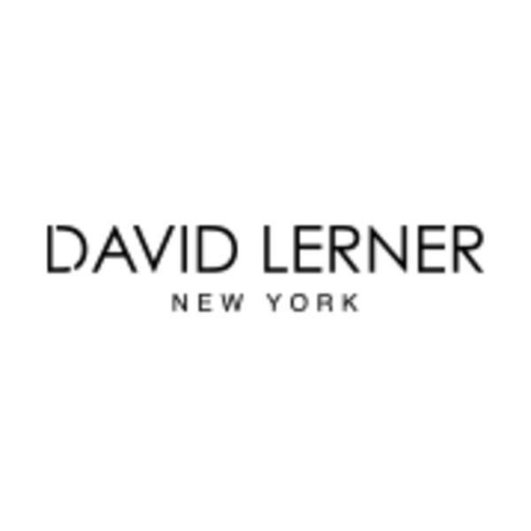 DAVID LERNER Logo