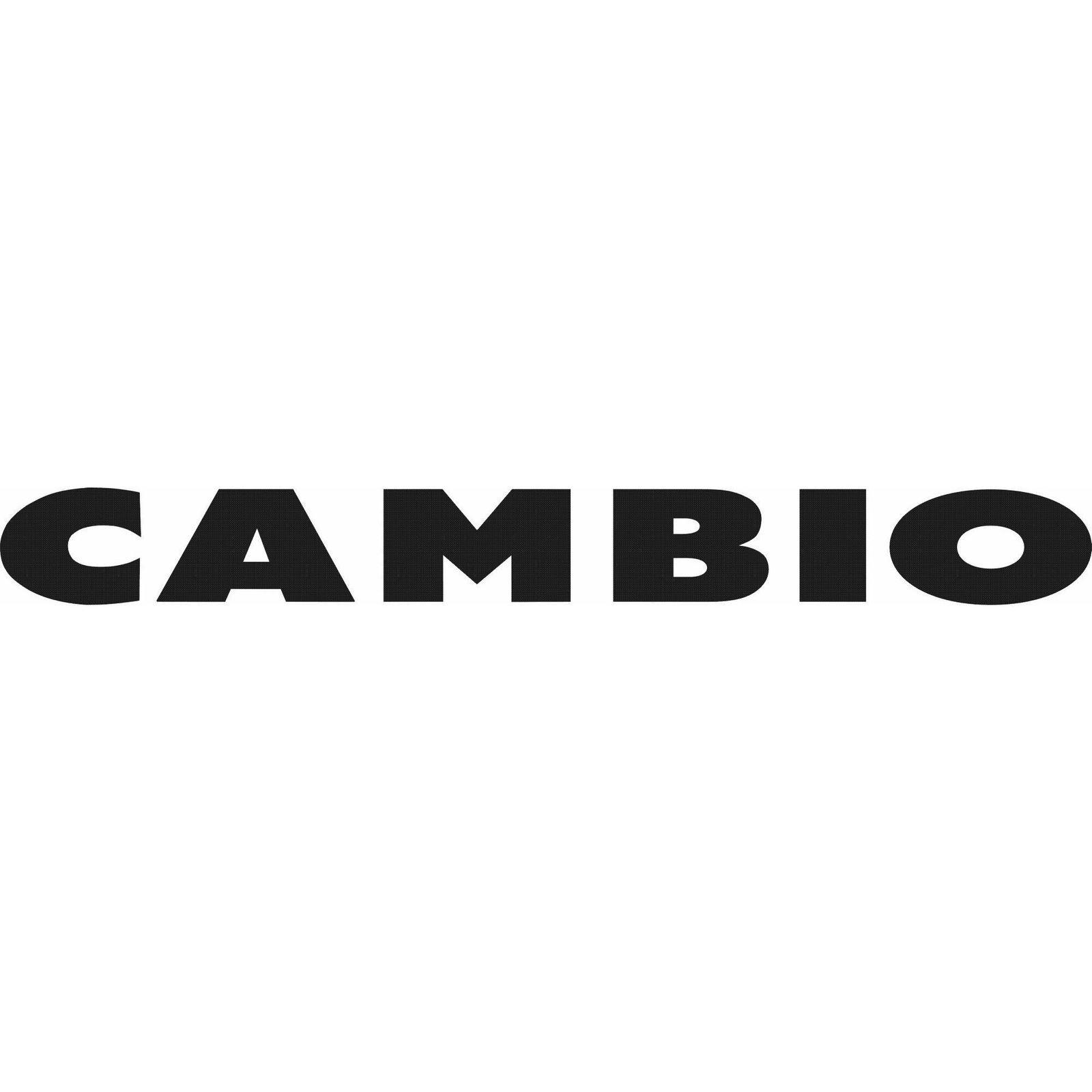 CAMBIO (Bild 1)