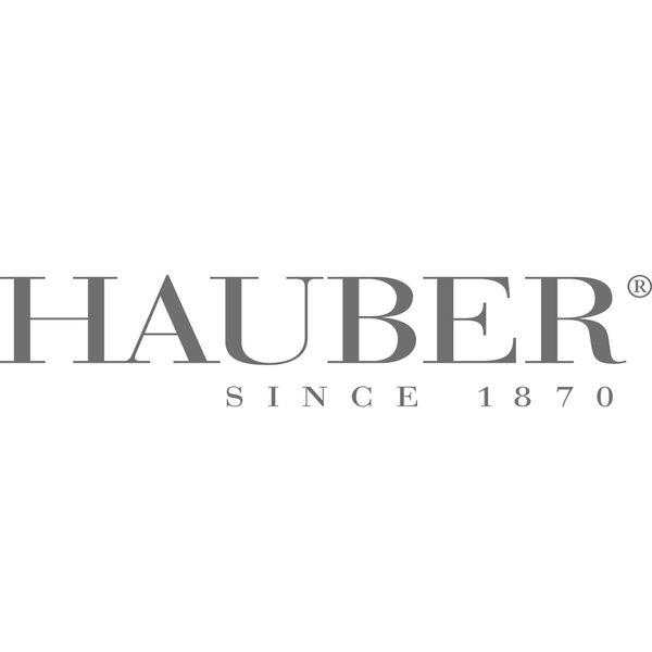 HAUBER Logo