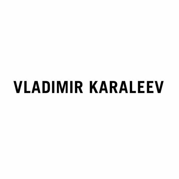 VLADIMIR KARALEEV Logo