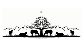 ROYAL BLUSH Logo