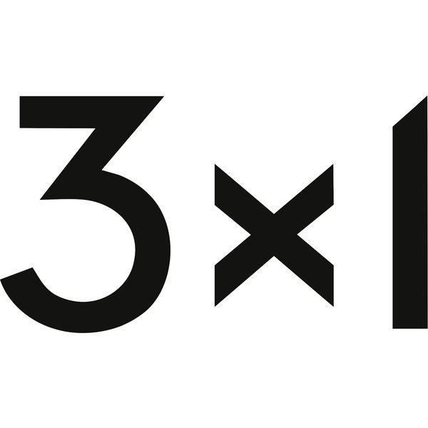 3x1 Logo
