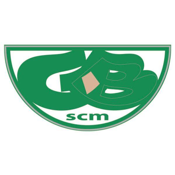scm   SAMPLE CM Logo