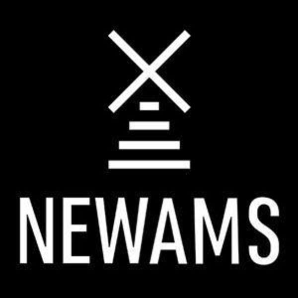 NEWAMS Logo