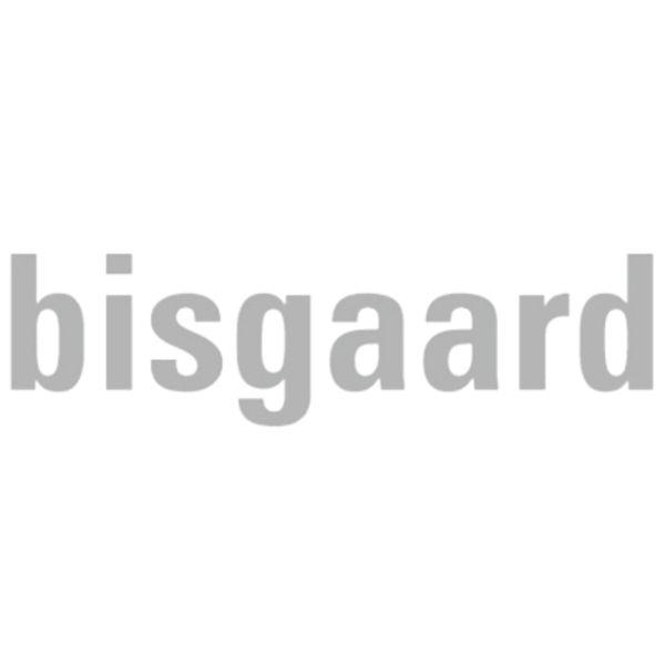 bisgaard Logo