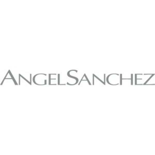 ANGEL SANCHEZ Logo