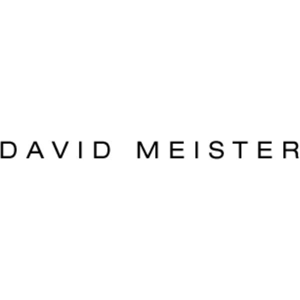 DAVID MEISTER Logo
