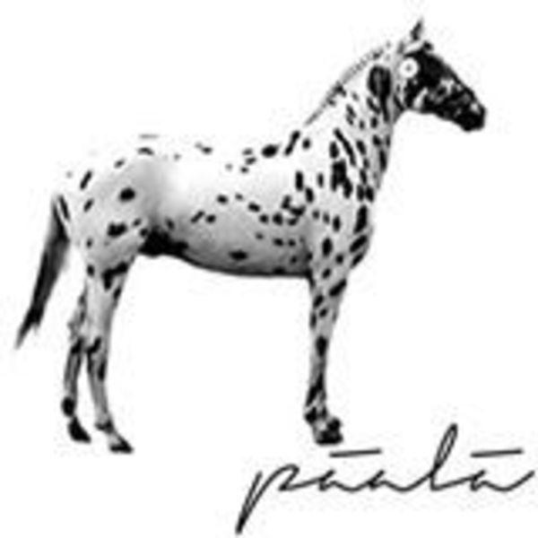 PÄÄLÄ Logo