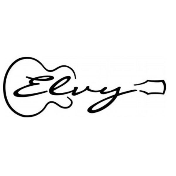 Elvy Fashion Logo