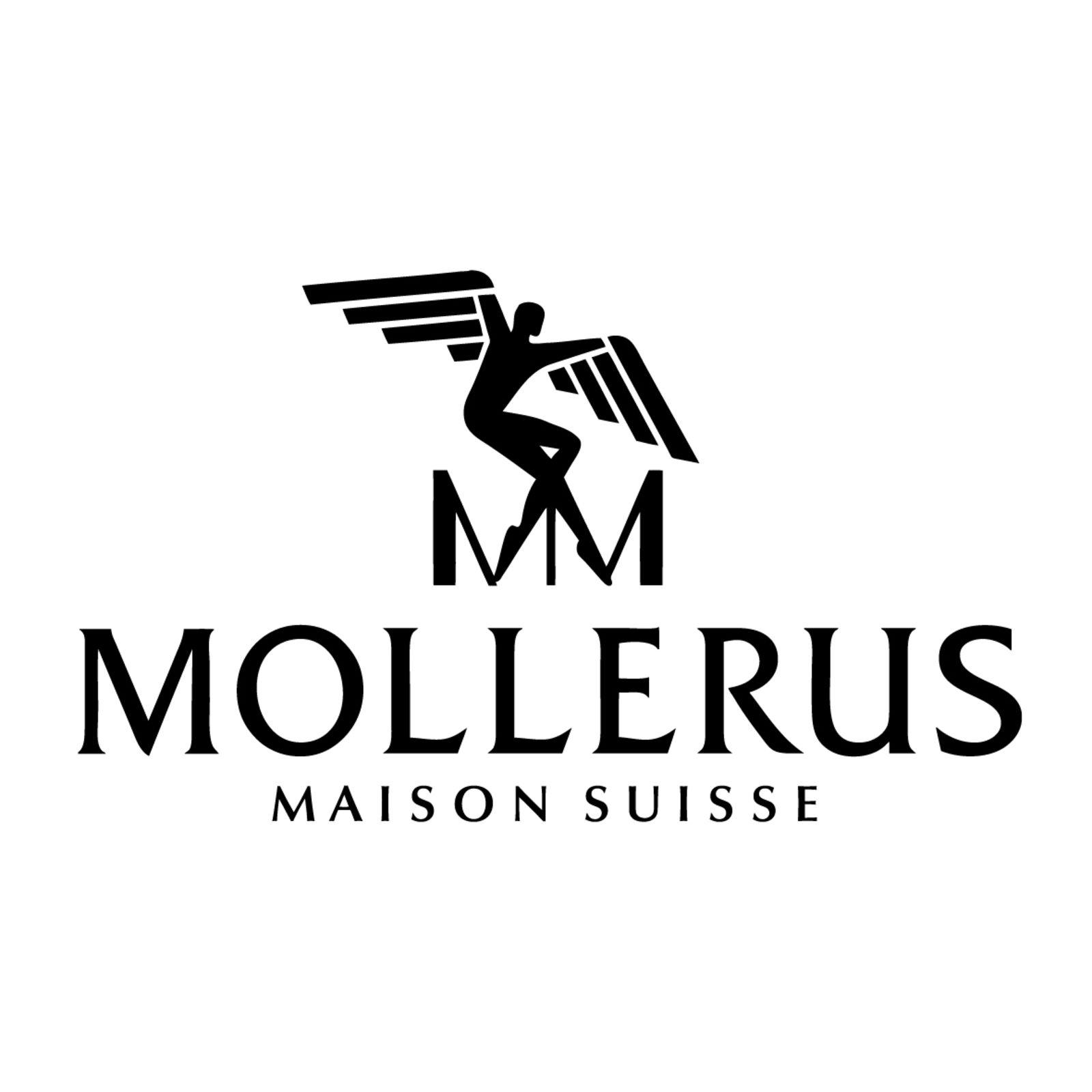 MAISON MOLLERUS (Bild 1)