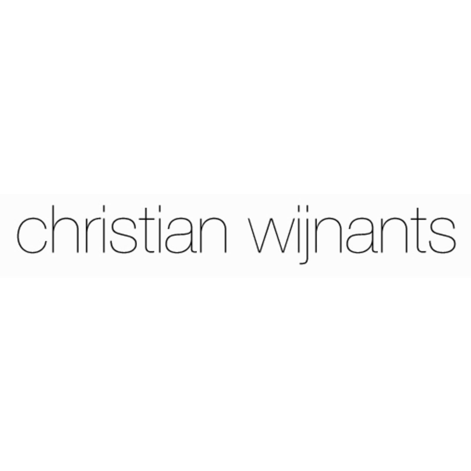 christian wijnants (Image 1)