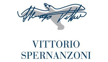 VITTORIO SPERNANZONI Logo