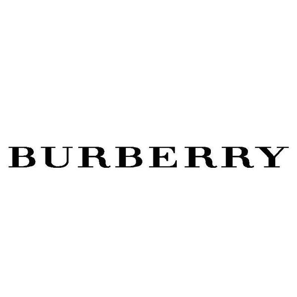 BURBERRY CHILDREN Logo