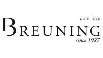 BREUNING Logo