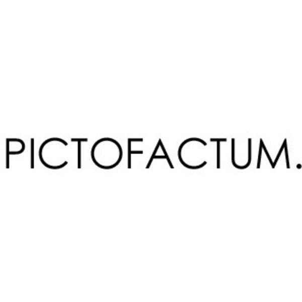 Pictofactum Logo