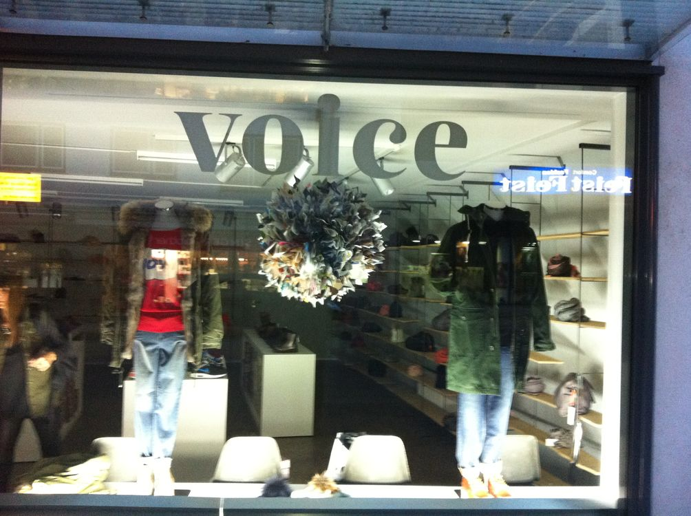 Voice in Kassel (Bild 4)