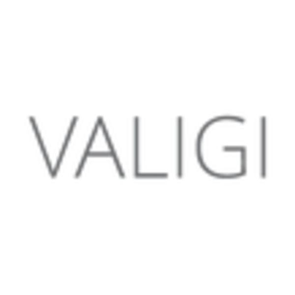 VAGILI Logo