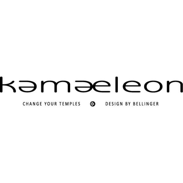 Kamaeleon Logo