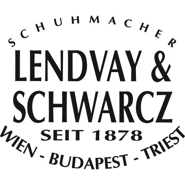 Lendvay&Schwarcz Logo