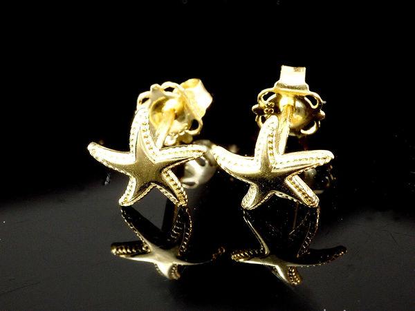 Starfish Seestern