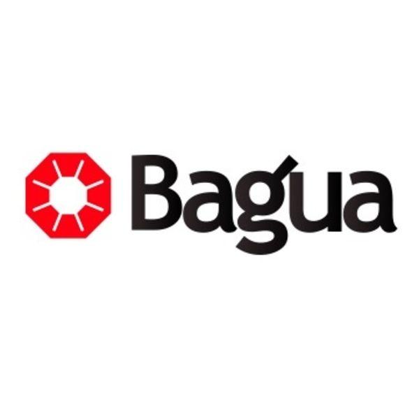 Bagua Logo