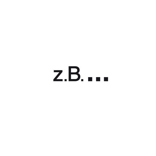 z.b...Berlin Logo