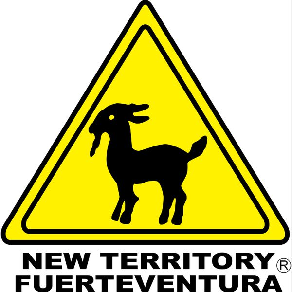 New Territory Fuerteventura Logo