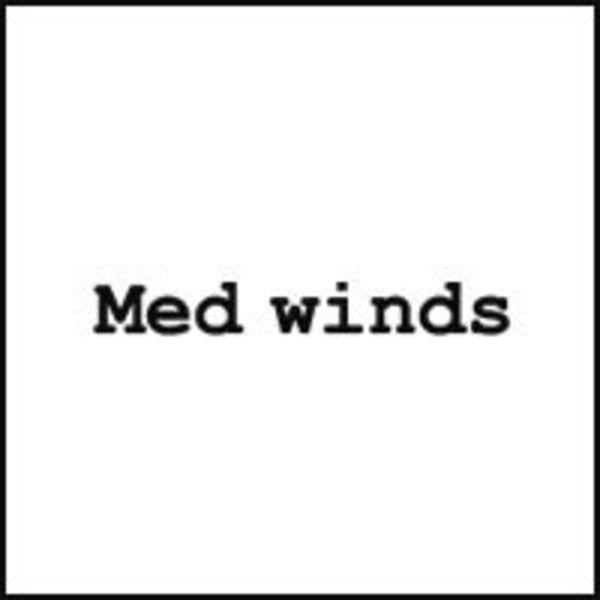 Med winds Logo
