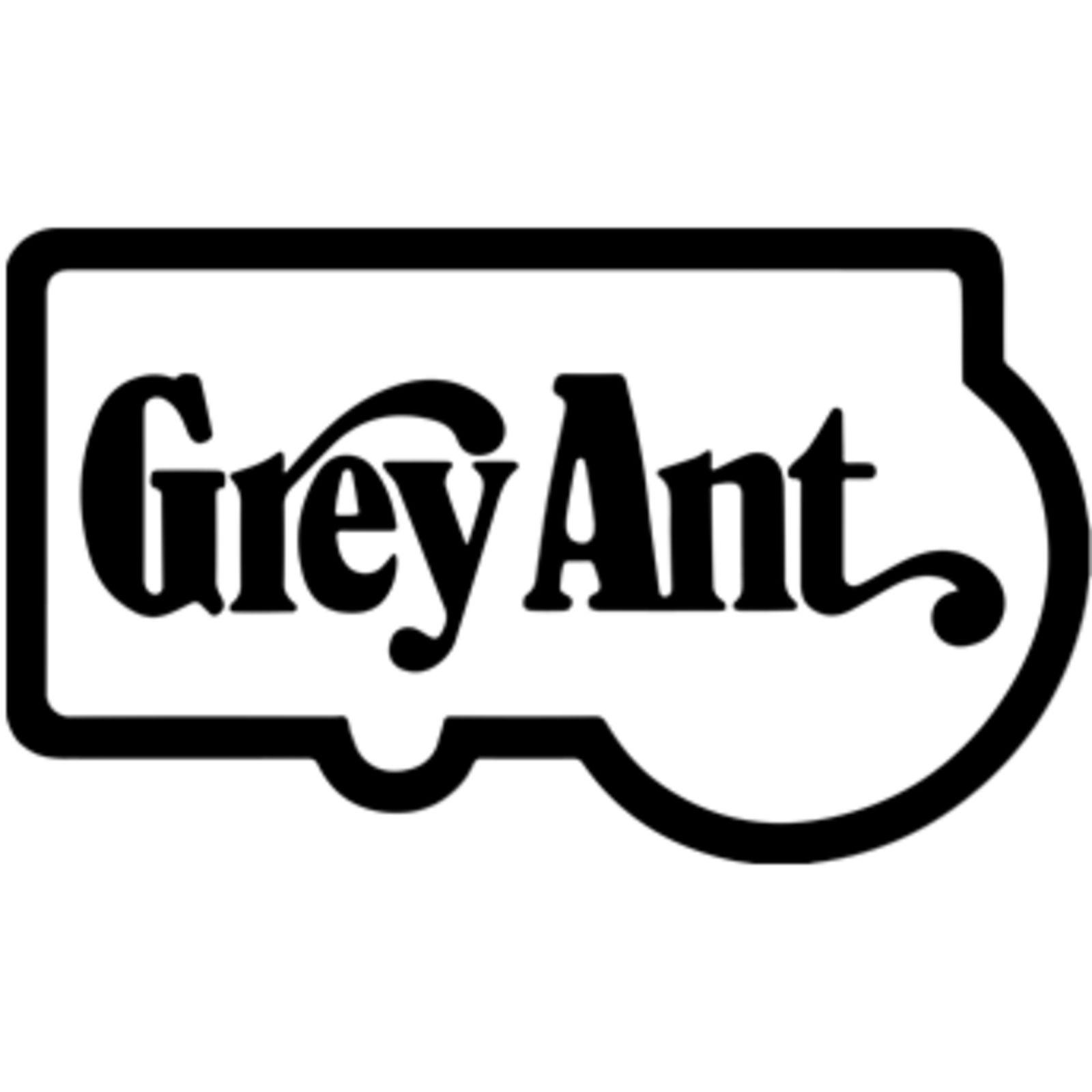 Grey Ant